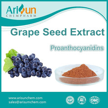 Factory Supply High Quality 95% Grape Seed P.E