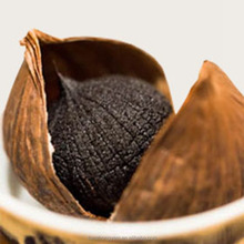 black garlic for exporting