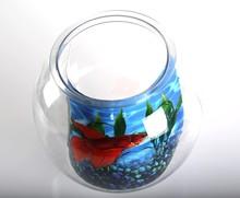 Plastic fish bowl