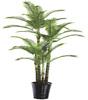 /p-detail/Moringaceae-filodendro-palma-di-bamb%C3%B9-signora-palma-il-persiano-kwai-albero-ingrosso-700000818034.html