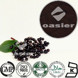 Top Quality Natural Elderberry fruit powder Extract