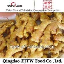China Fresh Ginger, Air dry ginger