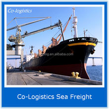 Reliable and Professional sea freight charges china to india