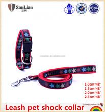 Hot Nylon Dog Collar and Lead Set
