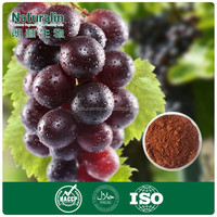 Grape Skin Extract with 80% Polyphenols