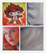 Polyester Mesh Fabric For Digital Advertising Printing