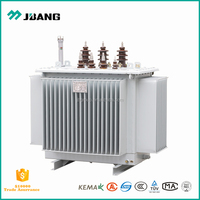 Three phase oil immersed 800kVA 11kV small high voltage transformer