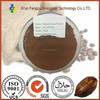 Nature Black Cocoa Powder,Fat10%-12%