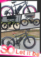 Wholesale 1000w 500W48V8fun motor snow electric bicycle / Fat tire Mountain electric bike with CE/en15194
