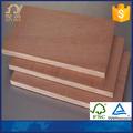 e1 gule eucalipto madeira portas design