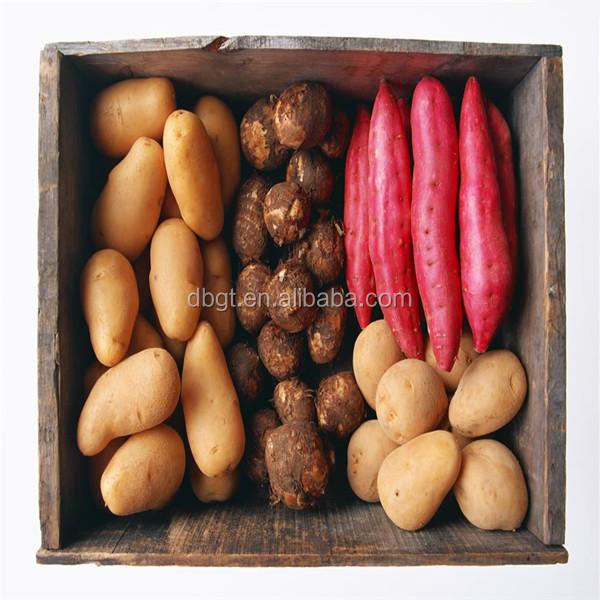 fresh sweet potato for sale/purple sweet potato export to Dubai