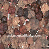 Wholoe Black Fresh Truffle 2014 new crop Wild Source