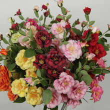 27792HN artificial floribunda rose with sharp prickles ,looks variety and coloful beauty
