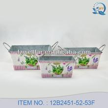 Paper Decal Rectangular Zinc Garden Planter with Ears