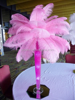 Party decorations pink ostrich feather centerpiece