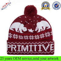 High quality 100 acrylic knitted funny winter ski hat