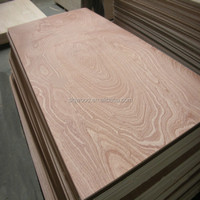 3mm 4.0mm 4.5mm 5mm Red Meranti ply Okoume ply bintangor ply pine commercial Plywood