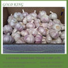 Wholesale Garlic Price in Bulk, Garlic price