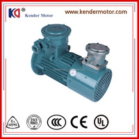 AC Ex-Proof Motor / Electric Motor / Variable Frequency Drive