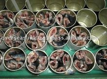 Morocco Overseas High Quality Sardine and Mackerel frozen Fish