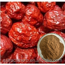 Supply 10:1 20:1 Natural Common Jujube Fruit Extract powder
