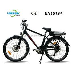 Rear wheel motor electric bike