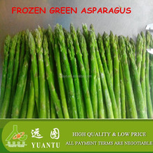 farm supply iqf frozen green asparagus healthy food