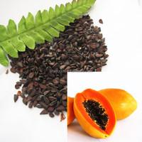 mu gu zhong zi papaya seeds planting papaya seeds