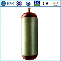 Short Delivery Time Seamless Steel CNG Tank