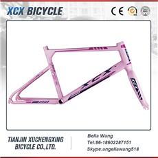 aluminum bike frame 001.jpg