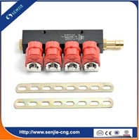 CNG LPG Fuel Gas Injector Rail
