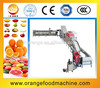 High Efficiency Electronic Tomato Washing Waxing and Sorting Equipment
