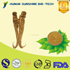 alibaba china supplier Angelica extract/Dong Quai extract medicine for blood circulation & anti-inflammatory function