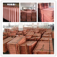 factory price copper cathode 1 kg copper price