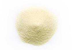 Dehydrated Garlic granules 40-80mesh -Chinese garlic- YY spice