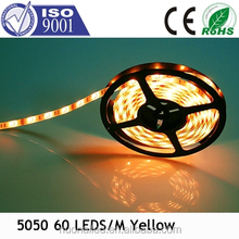 Colors Option Outdoor Use IP67 led Strip Light SMD 5050 LED Rope Light