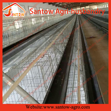 complete automatic feeding system on poultry farm