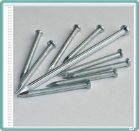 Hot Dip Galvanized Concrete Steel Nails/Concrete Nails China