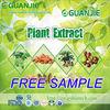100% natrural kale powder for sale