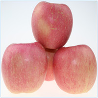 china fresh red delicious apple