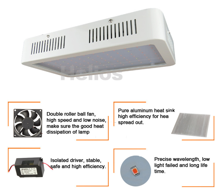 Commercial Greenhouse Led Grow Lights: Led Grow Light Full Spectrum Commercial Greenhouse Light