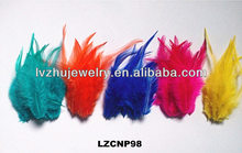 dyed colors Rooster feathers LZCNP98