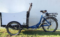 Cargo Bike electric bike front cargo trike 3 wheel cargo & tricycle for adult
