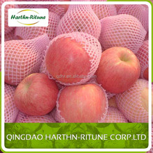 2015 new crop of fresh royal gala apple from Shandong province China