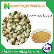 2015 new arrival Tartary buckwheat Extract