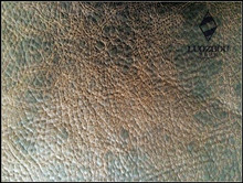 2015 printed suede fabric for sofas