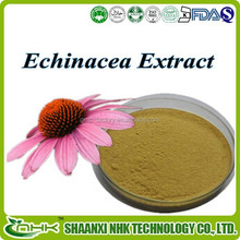 2015 GMP standard manufacturer offer high quality polyphenols 4% echinacea extract