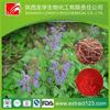 10 years professional manufacturer radix salviae miltiorrhizae extracts