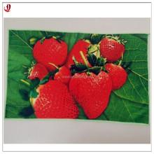 Promotion Standard Printed Microfiber Fabric Kitchen Towel