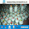 2015 Latest GFP-13 Low Price Disposable Welded Helium Tank for Sale